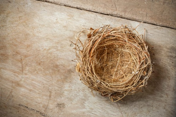 How Empty Nest Syndrome Can Lead to Divorce