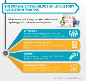 infographic on the child custody evaluation process for a forensic psychologist