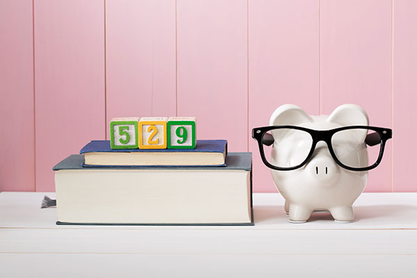 What Types of Expenses Are Covered by Child Support?
